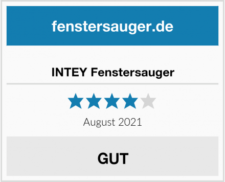 No Name INTEY Fenstersauger Test