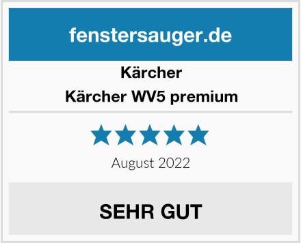 Kärcher Kärcher WV5 premium Test