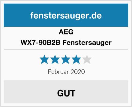 AEG WX7-90B2B Fenstersauger Test