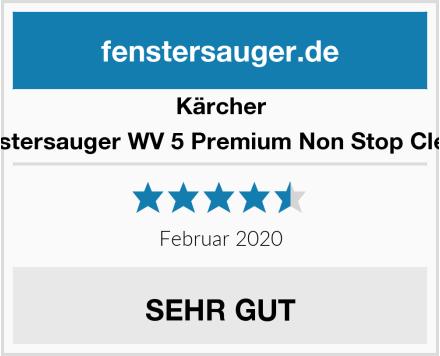Kärcher Akku Fenstersauger WV 5 Premium Non Stop Cleaning Kit Test